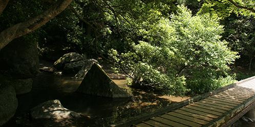 王滝渓谷 渓谷風景