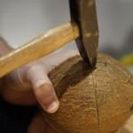 ココナッツオイルの製造方法 画像